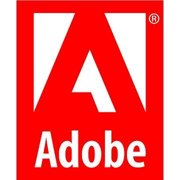Adobe Photoshop Creative Cloud MP ML (vč. CZ) Commercial (12 měsíců) (elektronická licence) (ACC65270823BA01A12-12)