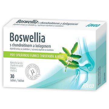Boswellia s kolagenem a chondroitinem 30tbl. (8595067106496)