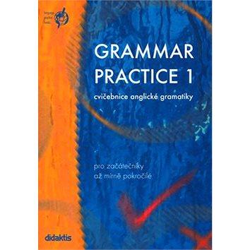 Grammar practice 1: cvičebnice anglické gramatiky pro začátečníky až mírně pokročilé (80-86285-40-5)
