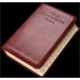 Malá Jeruzalémská Bible (978-80-7195-589-4)
