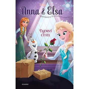 Anna a Elsa Tajemný ctitel (978-80-252-4177-6)
