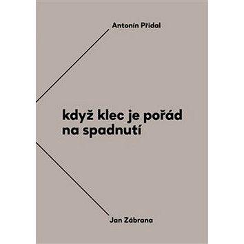 Když klec je pořád na spadnutí: Vzájemná korespondence Antonína Přidala a Jana Zábrany z le