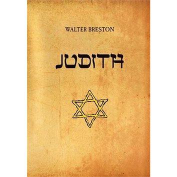 Judith (978-80-7428-331-4)