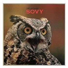 Sovy (978-80-260-8640-6)
