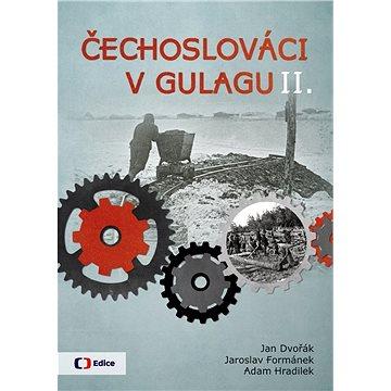 Čechoslováci v Gulagu II. (978-80-7404-311-6)