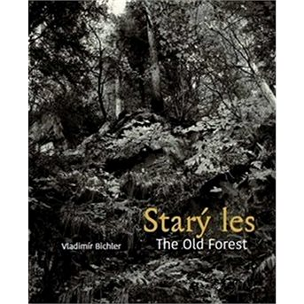 Starý les / The Old Forest (978-80-7437-284-1)