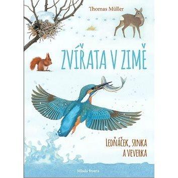 Zvířata v zimě: Ledňáček, srnka a veverka (978-80-204-5291-7)