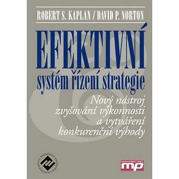 Efektivní systém řízení strategie (978-80-7261-203-1)