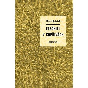 Ezechiel v kopřivách (978-80-7108-348-1)