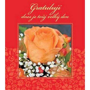 Gratuluji dnes je tvůj velký den (978-80-7297-102-2)