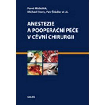 Anestezie a pooperační péče v cévní chirurgii (978-80-7262-891-9)