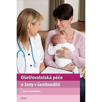 Ošetřovatelská péče o ženy v šestinedělí (978-80-7387-624-1)