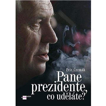 Pane prezidente, co uděláte? (978-80-87685-12-9)
