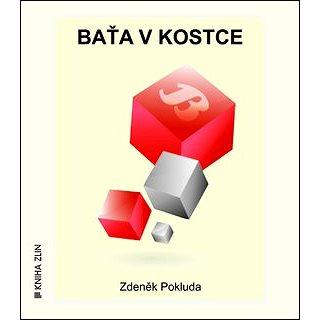 Baťa v kostce (978-80-7473-126-6)
