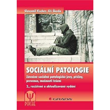 Sociální patologie: Závažné sociálně patologické jevy, příčiny, prevence, možnosti řešení (978-80-247-5046-0)