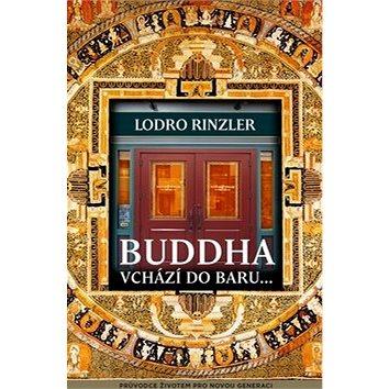 Buddha vchází do baru: The Buddha Walks Into a Bar (978-80-7370-316-5)