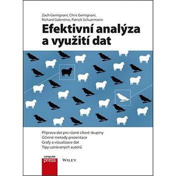 Efektivní analýza a využití dat: Příprava dat pro různé cílové skupiny (978-80-251-4571-5)