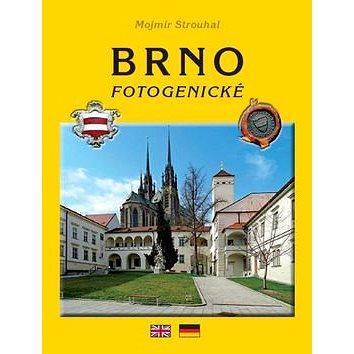 Brno fotogenické (978-80-85763-85-0)