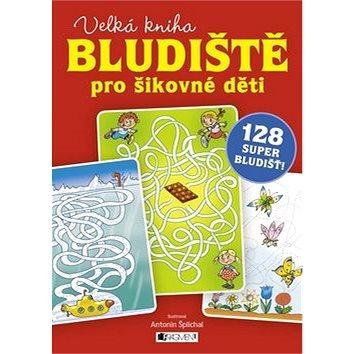 Bludiště pro šikovné děti velká kniha: 128 super bludišť! (978-80-253-2568-1)