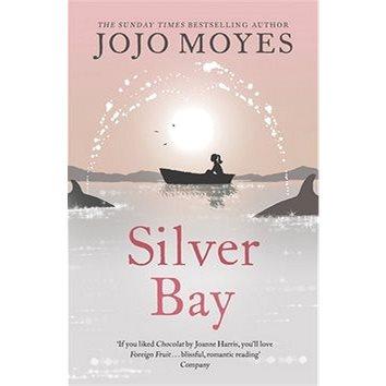 Silver Bay (9780340895931)