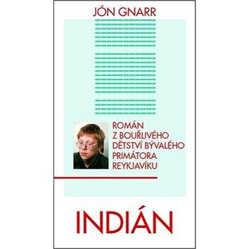 Indián: Román z bouřlivého dětství bývalého primátora Reykjavíku (978-80-7349-470-4)