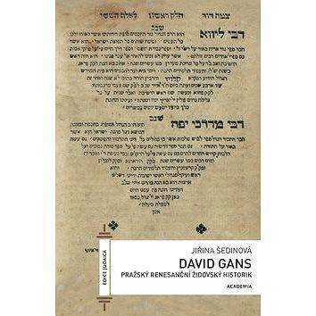 David Gans: Pražský renesanční židovský historik (978-80-200-2547-0)