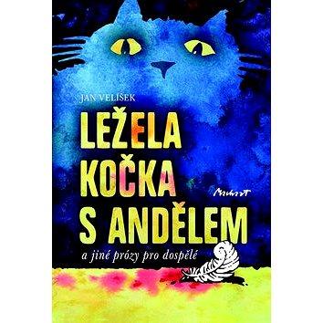 Ležela kočka s andělem: a jiné prózy pro dospělé (978-80-87938-37-9)