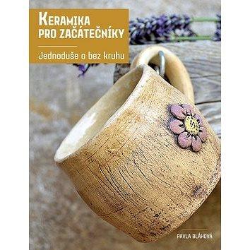 Keramika pro začátečníky: Jednoduše a bez kruhu (978-80-264-1389-9)
