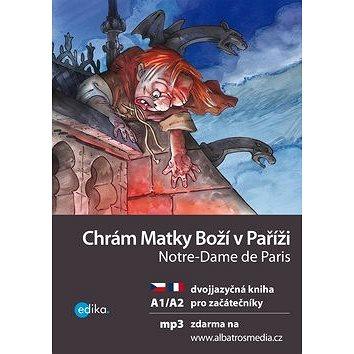 Chrám Matky Boží v Paříži Notre-Dame de Paris: dvojjazyčná kniha (978-80-266-1072-4)