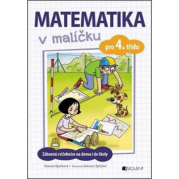 Matematika v malíčku pro 4. třídu: Zábavné cvičení na doma i do školy (978-80-253-3249-8)