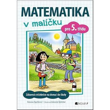 Matematika v malíčku pro 5. třídu: Zábavné cvičení na doma i do školy (978-80-253-3250-4)