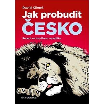 Jak probudit Česko: Recept na úspěšnou republiku (978-80-265-0645-4)
