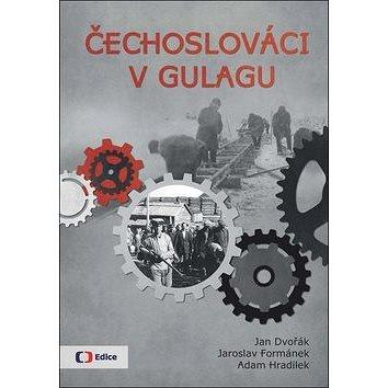 Čechoslováci v Gulagu (978-80-7404-235-5)
