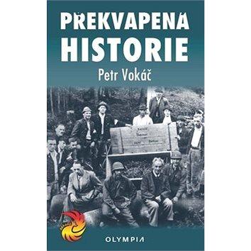 Překvapená historie (978-80-7376-493-7)