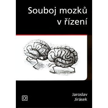 Souboj mozků v řízení (80-86851-01-X)