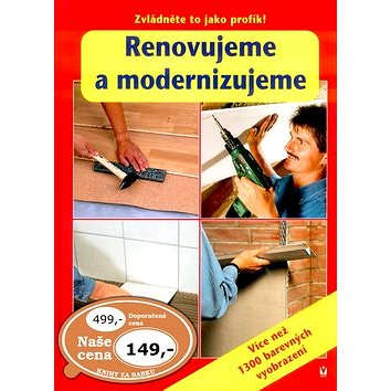 Renovujeme a modernizujeme: Zvládněte to jako profík! (80-7236-404-9)