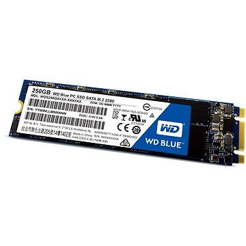 WD Blue PC SSD 250GB M.2 (WDS250G1B0B)