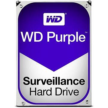 WD Purple NV 10TB (WD100PURZ)