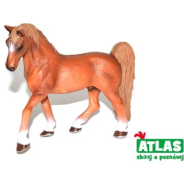 Atlas Kůň (8590331018482)