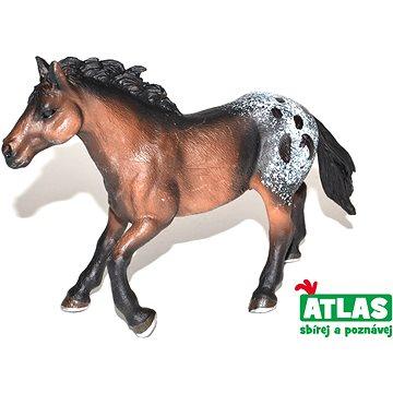 Atlas Kůň (8590331018499)