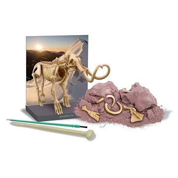 Dinosauří kostra - Mamut (8590439032366)