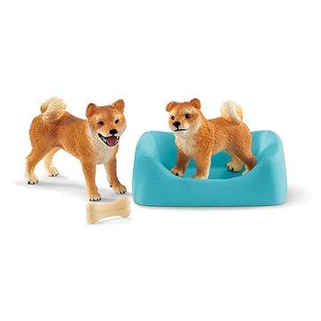 Schleich 42479 Fenka a štěně Shiba Inu (4055744029851)