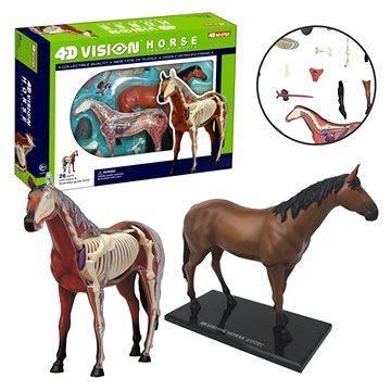 4D Kůň (4893409261013)