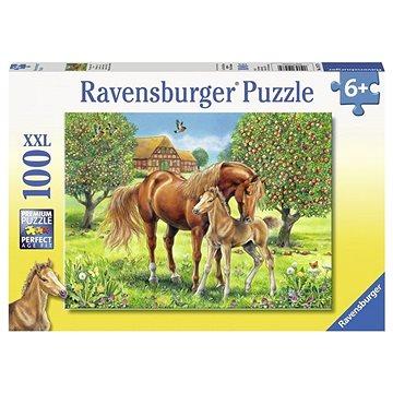 Ravensburger 105779 Koně na pastvině (4005556105779)