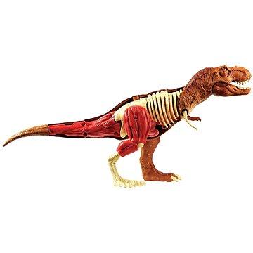 Jurassic World Anatomie (887961642360)
