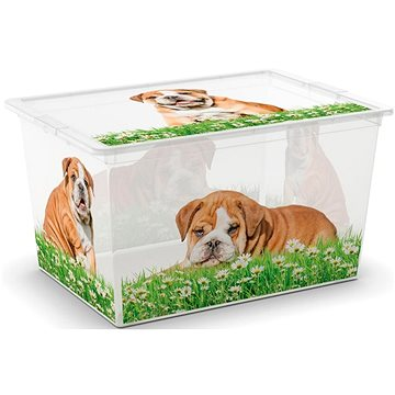 KIS C-Box Puppy & Kitten XL 50l na kolečkách (84180002057)