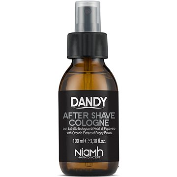 DANDY After Shave Cologne 100 ml (80317005)