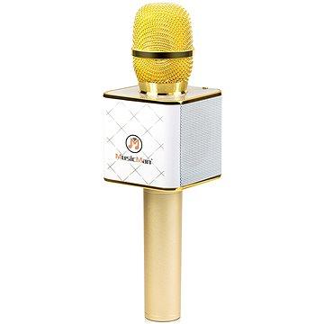 Technaxx BT-X31 Karaoke Mikrofon (4685)