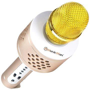 Technaxx 4611 PRO karaoke BT-X35 zlatý (4611 )