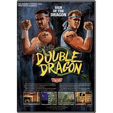 Double Dragon Trilogy (00b8f56c-6634-4c55-b43f-cdf392164317)